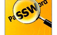 Nsasoft SpotAuditor Crack 5.3.5 Latest Version Free Download